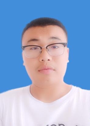 李先生个人简历